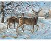 Cobble Hill Puzzles 500Puz Winter Deer
