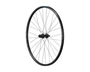 Shimano RS171 Disc Rear Wheel (142 x 12) (700c) | product-related