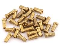 Enve Internal Spoke Nipples (Brass) (10mm)